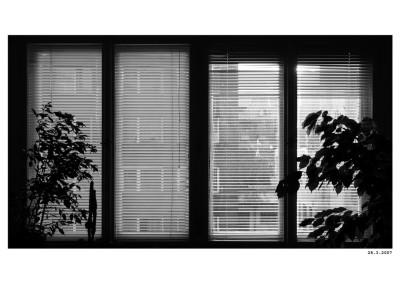 2007_03_28_NeDoma