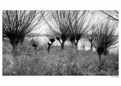2007_03_29_Rybnik