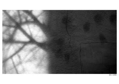 2008_02_28_Narozi