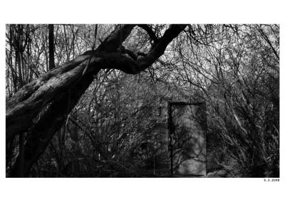 2008_03_05_Dvere