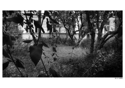 2009_09_24_LN